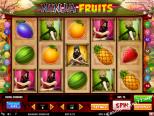 ilmaiset kolikkopelit Ninja Fruits Play'nGo